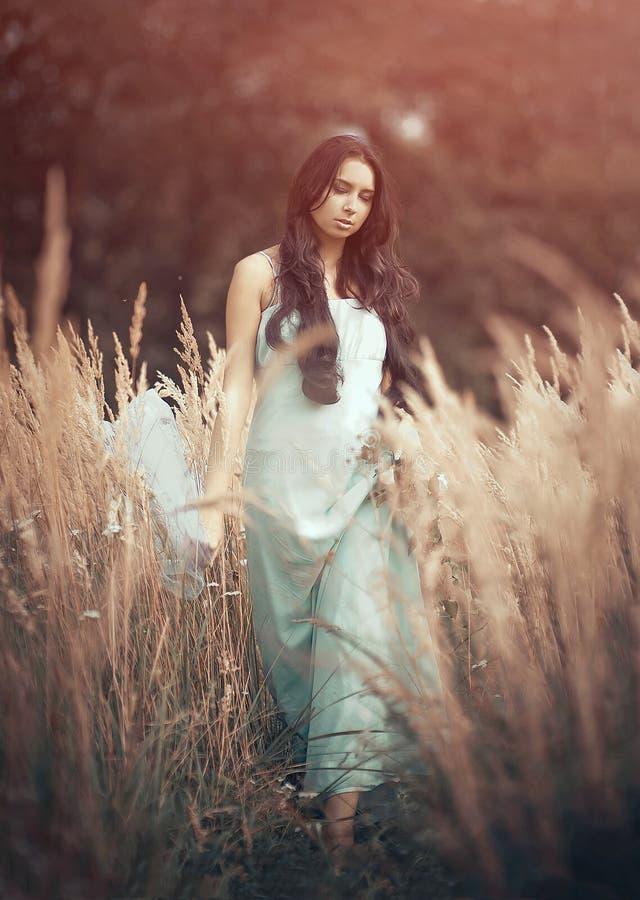 Härlig romantisk kvinna i saga, dryad royaltyfri fotografi