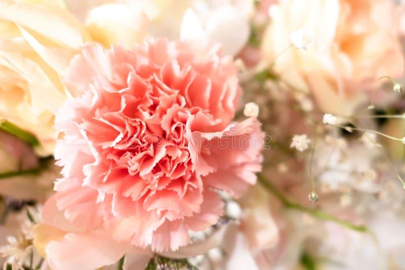 härlig rosa färgblomma för closeup som gifta sig blomman arkivfoto