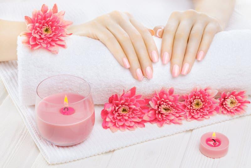 Härlig rosa manikyr med krysantemumet och handduk på den vita trätabellen Spa fotografering för bildbyråer