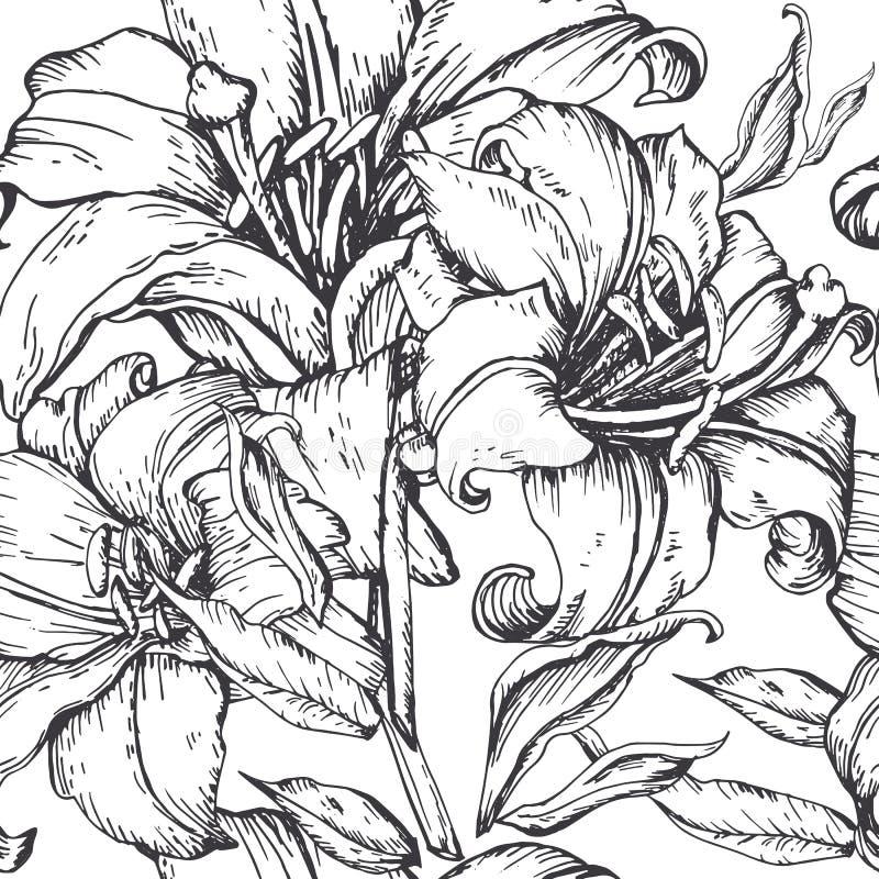 Härlig sömlös bakgrund med liljahand-teckningen stock illustrationer