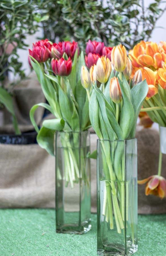 Härlig sammansättning av tulpan i vaser royaltyfri foto