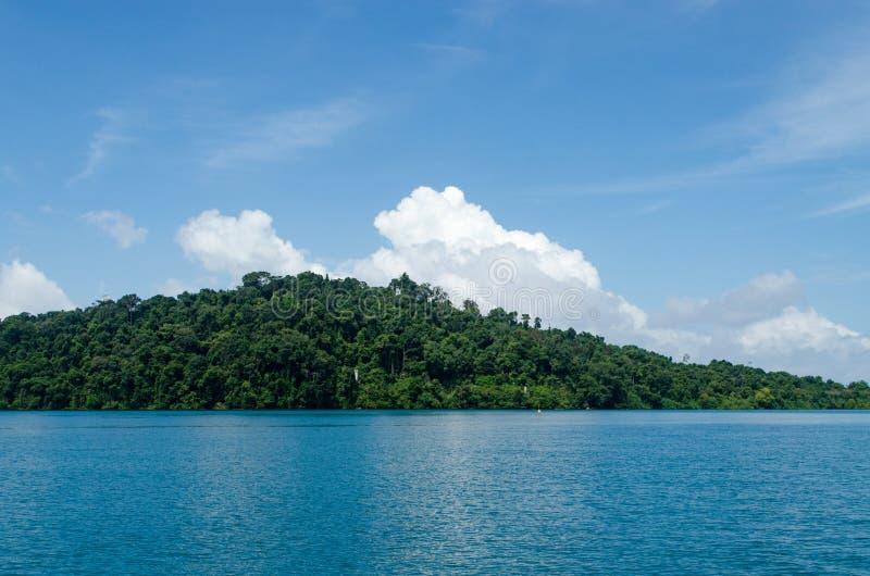 Härlig Seascape med fokusen på skogen på berget vaggar royaltyfri foto