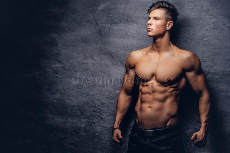 Härlig shirtless modell för ung man med den trevliga muskulösa kroppen som poserar på en studio fotografering för bildbyråer
