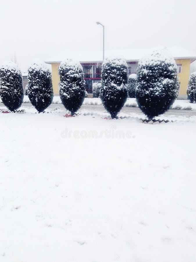 Härlig sikt av att snöa arkivbilder