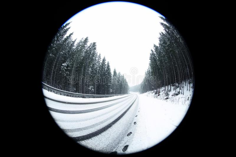 Härlig sikt av barrträdskogen nära vägen på den snöig dagen, effekt för fisköga royaltyfri bild