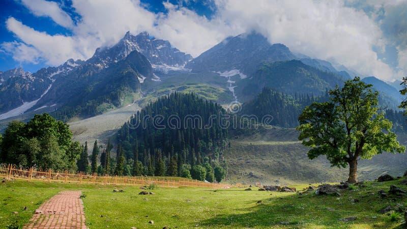 Härlig sikt av berg som täckas med snö royaltyfria foton