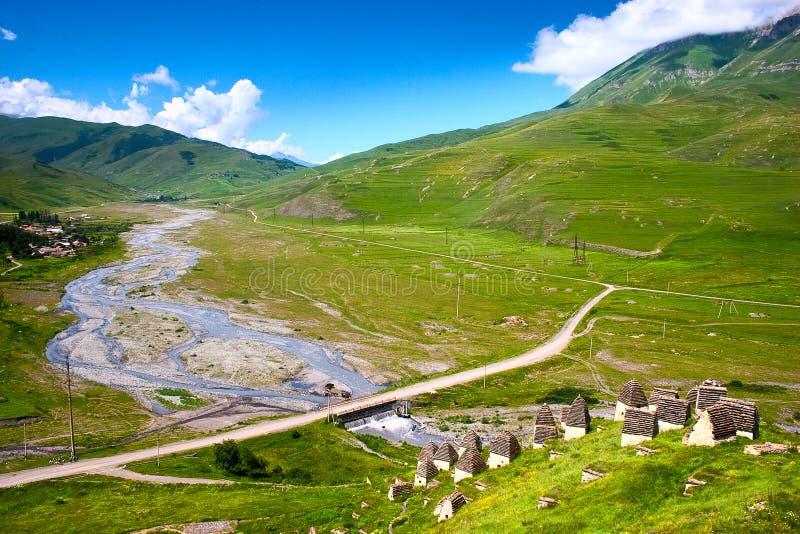 Härlig sikt av bergfloden i sommar royaltyfri bild