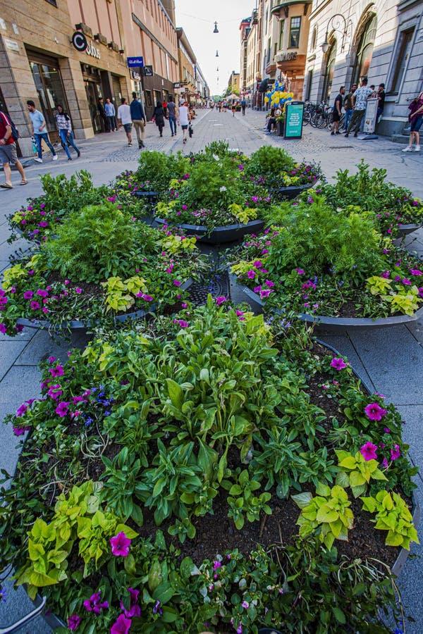 Härlig sikt av blommasammansättning på slutet av den fot- gatan i centr av staden royaltyfri bild