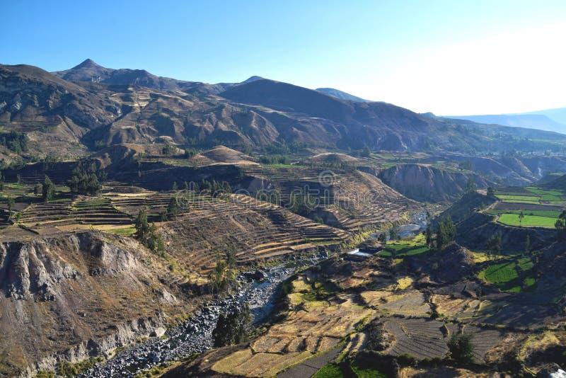 Härlig sikt av den Colca kanjonen royaltyfri bild
