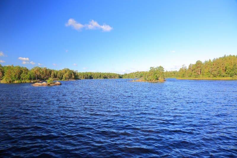 Härlig sikt av det naturliga landskapet Lugna vattenyttersida, gröna skogträd och blå sommarhimmel Ursnygga naturbakgrunder arkivfoto