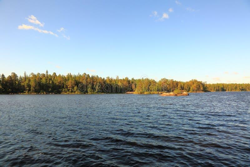 Härlig sikt av det naturliga landskapet Lugna vattenyttersida, gröna skogträd och blå sommarhimmel Ursnygga naturbakgrunder royaltyfri fotografi