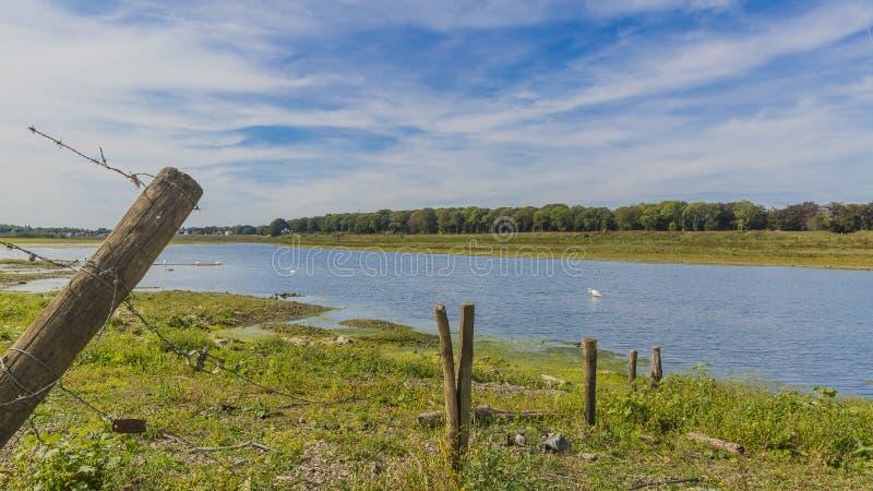 Härlig sikt av ett taggtrådstaket med träpoler och floden Maas arkivbilder