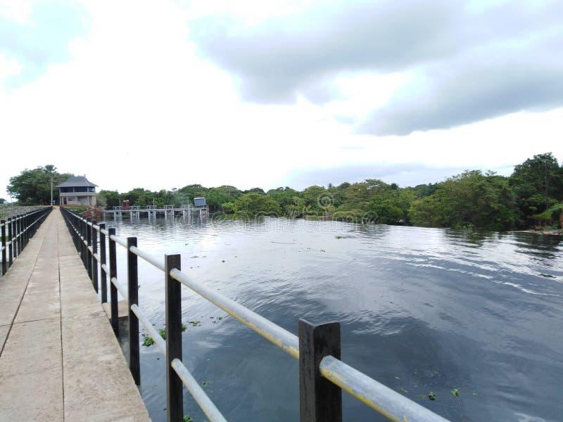 Härlig sikt av naturen med vatten royaltyfri fotografi