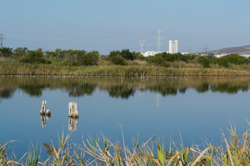 Härlig sikt av sjön i en naturvårdmitt arkivfoto