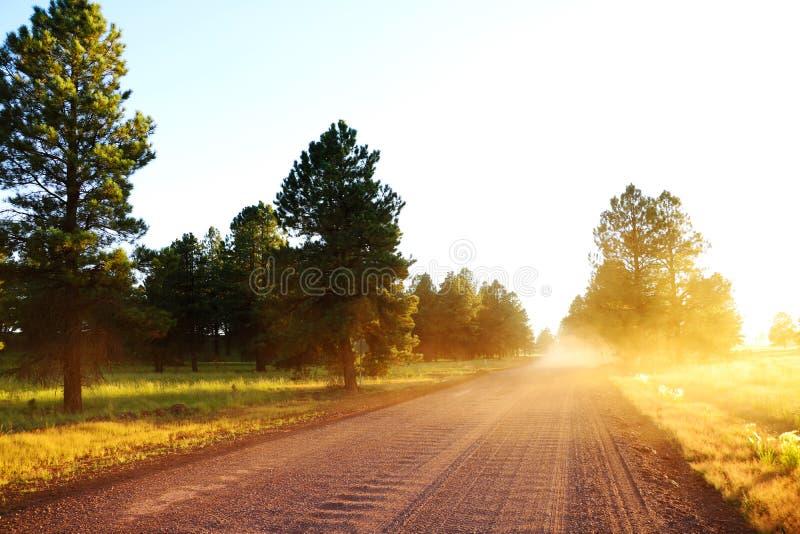 Härlig sikt av vägen under solnedgång Lantlig ljus väg, Arizona royaltyfria foton