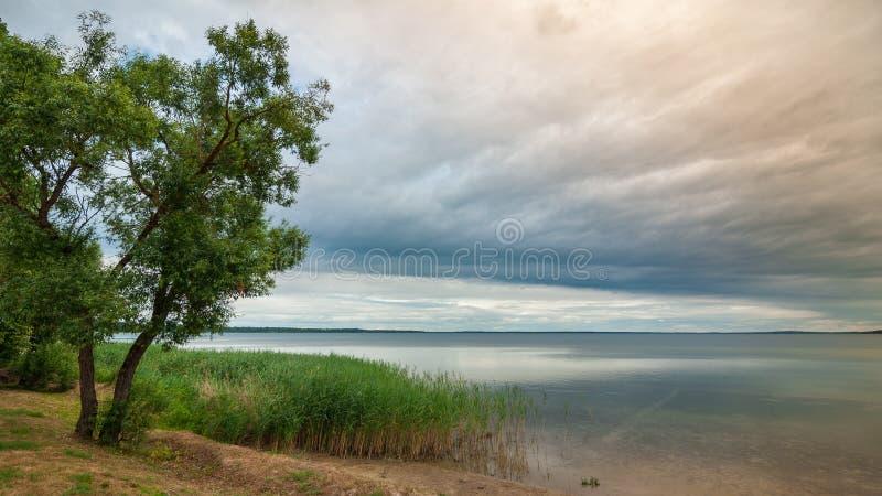 härlig sikt från kusten till en stor sjö under en molnig himmel för en åskväder royaltyfri bild