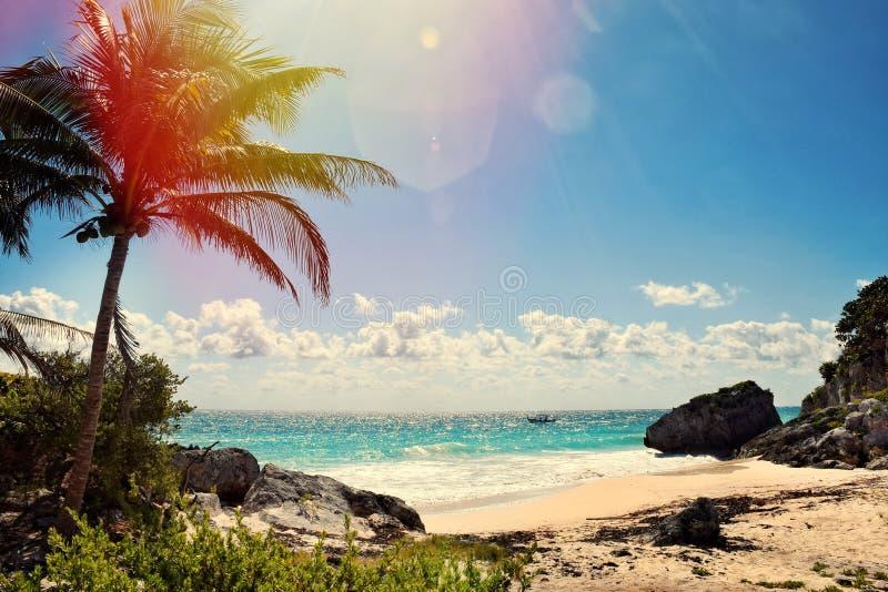 Härlig sikt i Cancun arkivbild