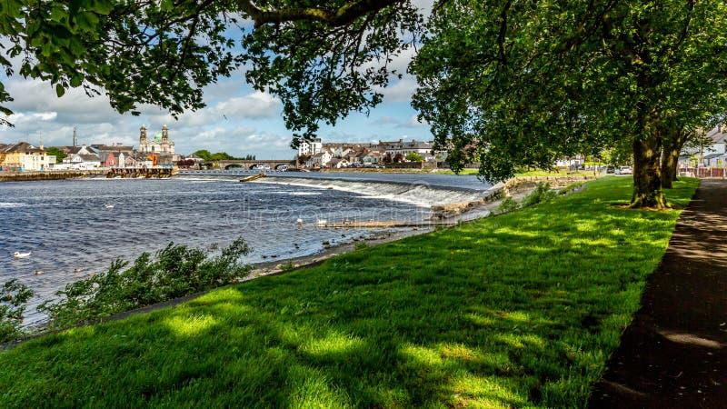 Härlig sikt mellan filialerna av träden av Shannon River arkivfoton