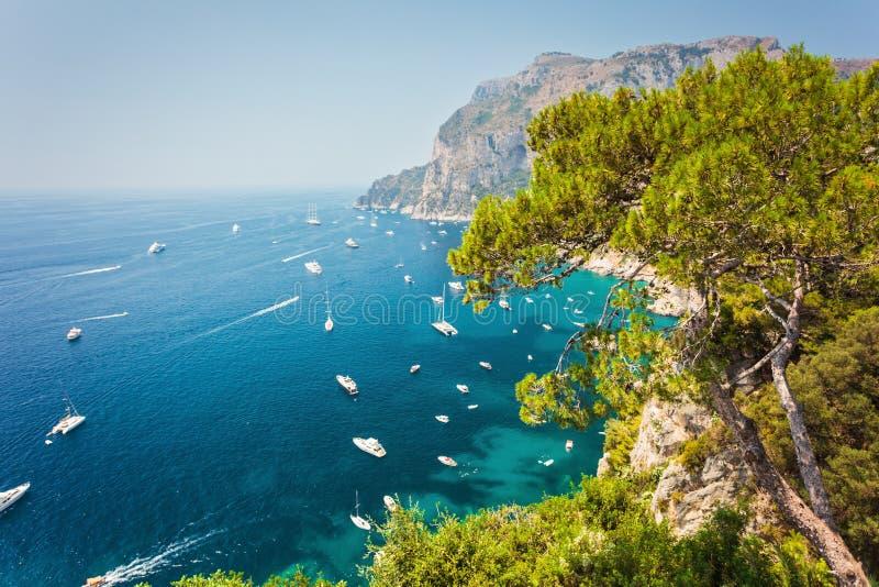Härlig sikt på den Capri hamnen royaltyfri bild