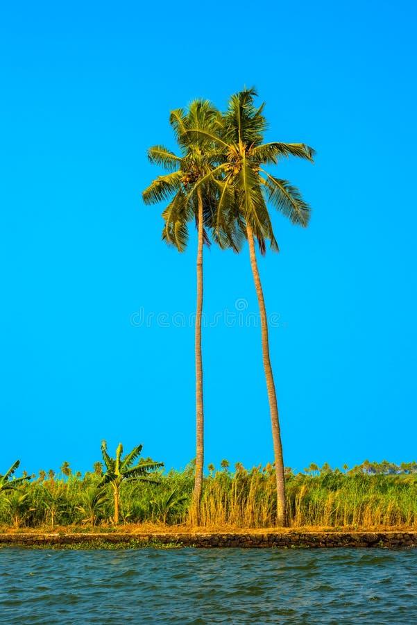 Härlig sikt på den tropiska stranden med palmträd. arkivfoto