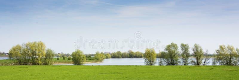 Härlig sikt på ett holländskt landskap nära floden Waal och Zaltbommel, vatten, grönt gräs, ängar och träd på en solig dag royaltyfri foto