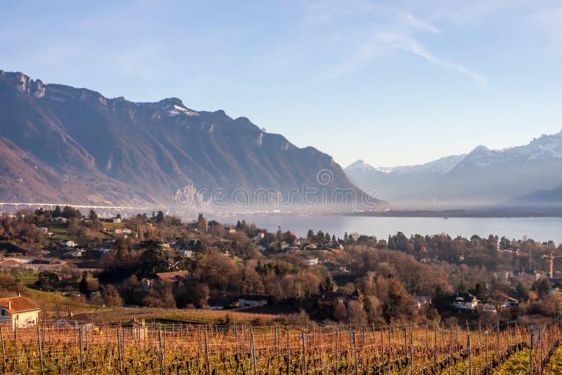 Härlig sikt på Genève sjön och fjällängar royaltyfria foton