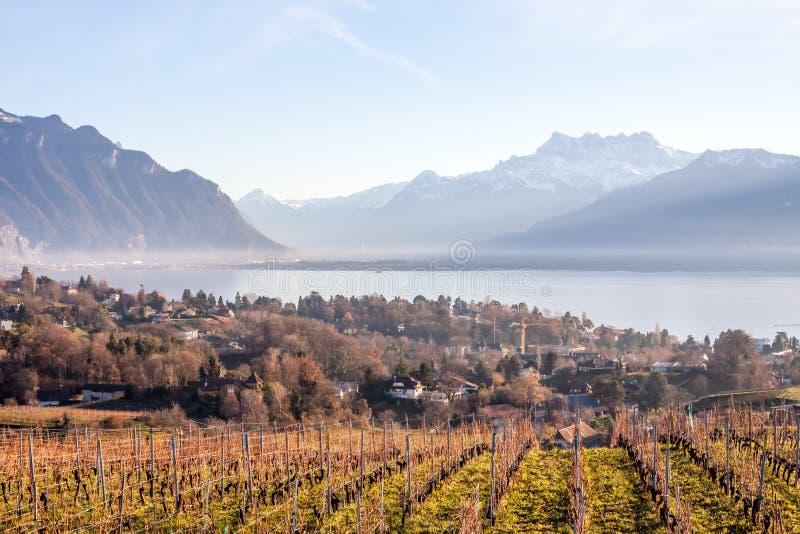 Härlig sikt på Genève sjön och fjällängar arkivbild