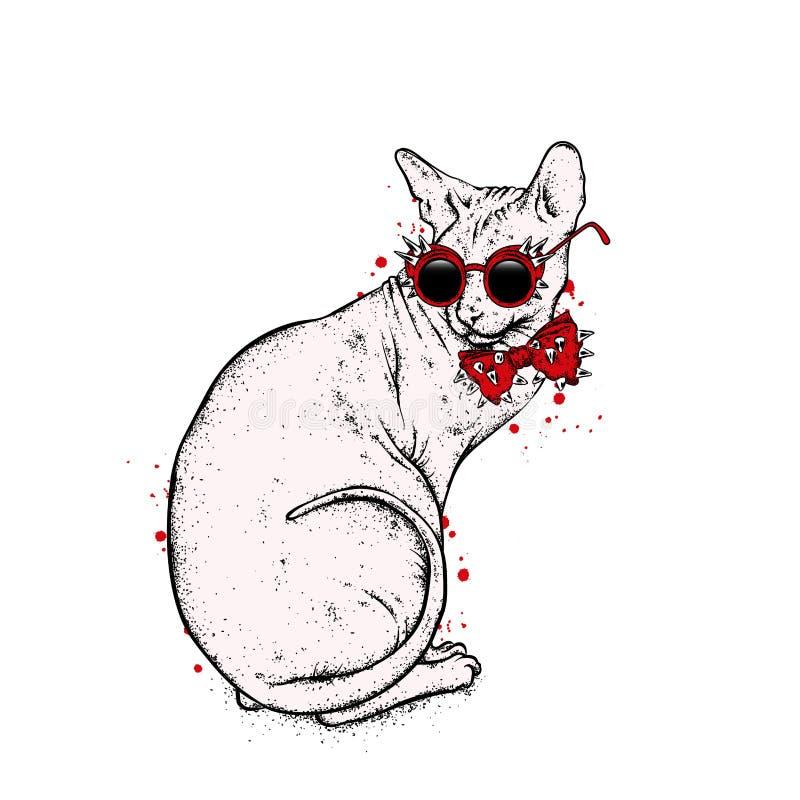 Härlig skallig katt med exponeringsglas och ett band med taggar Katt av den Sphynx aveln också vektor för coreldrawillustration royaltyfri illustrationer