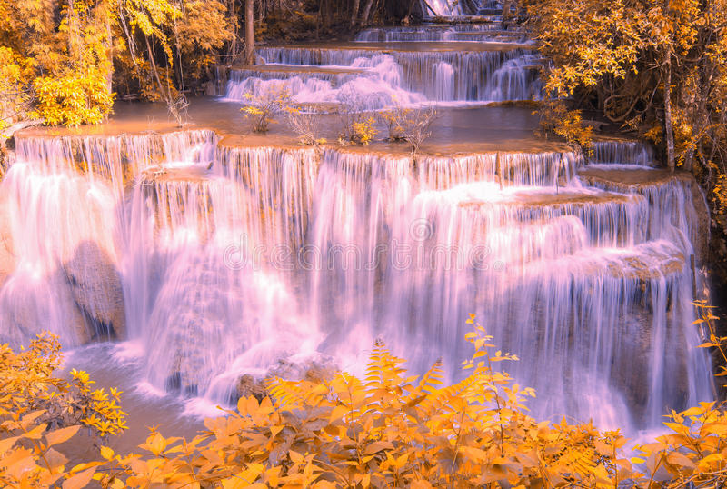 härlig skogvattenfall för höst royaltyfri fotografi