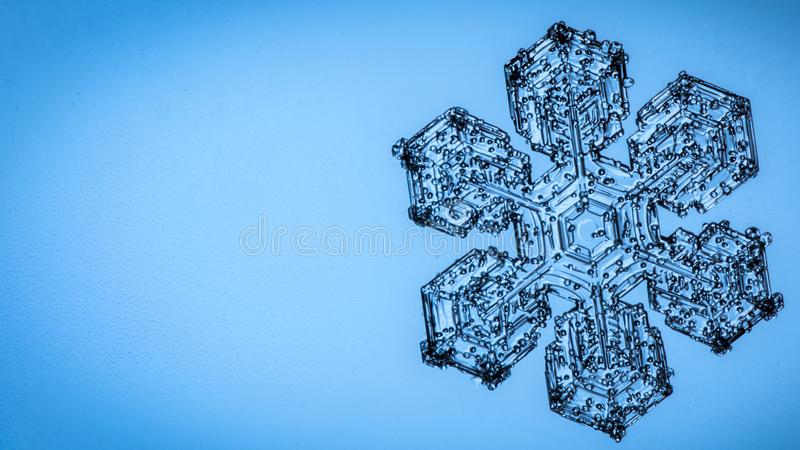 Härlig snöflinga på ett ljust - blått bakgrundsslut upp royaltyfria foton