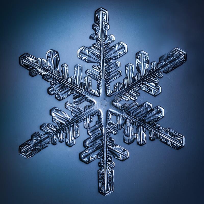 Härlig snöflinga på ett ljust - blått bakgrundsslut upp royaltyfri bild
