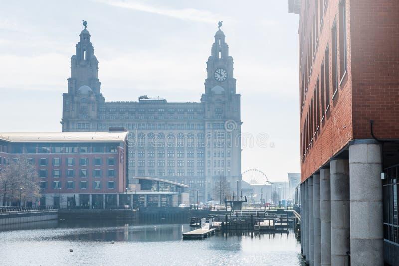 Härlig solig dag i Liverpool, UK, olika sikter av citen royaltyfria bilder