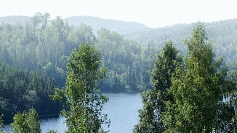 Härlig solig dimmig dag i skogberglandskap royaltyfria foton
