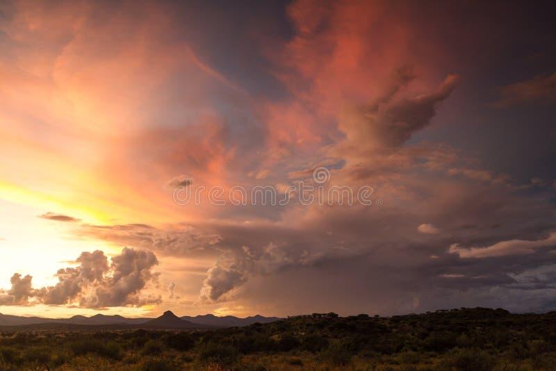 Härlig solnedgång över den namibian slätten arkivbild