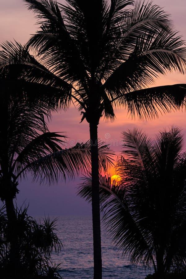 Härlig solnedgång över havs- och skymninghimlen och kontur av arkivfoto