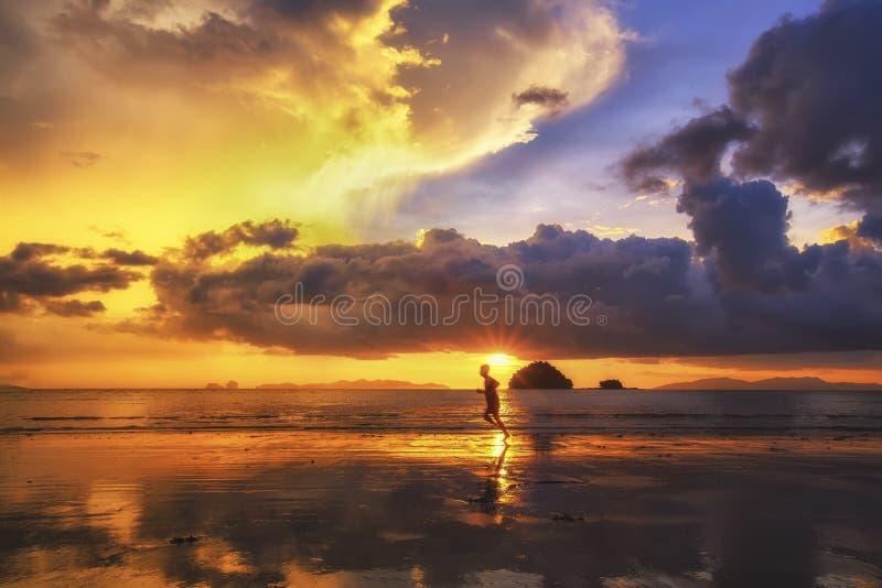 härlig solnedgång royaltyfri foto