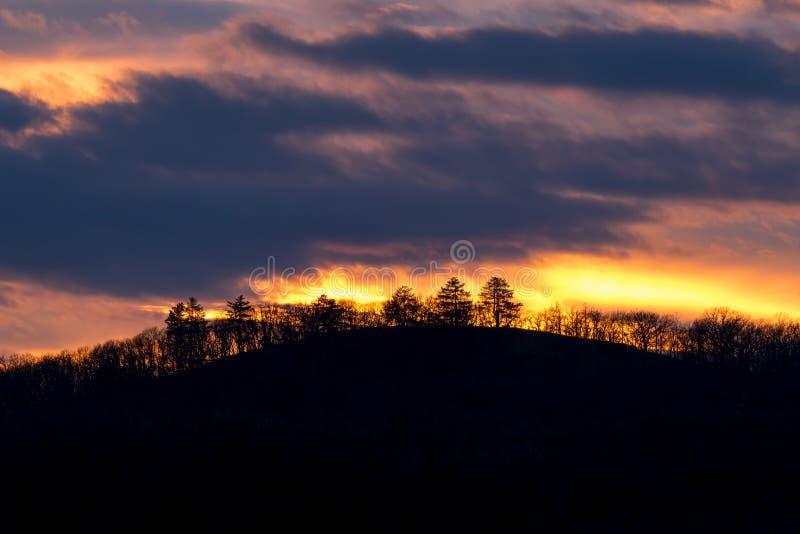 Härlig solnedgång bak en rugge av träd royaltyfri foto