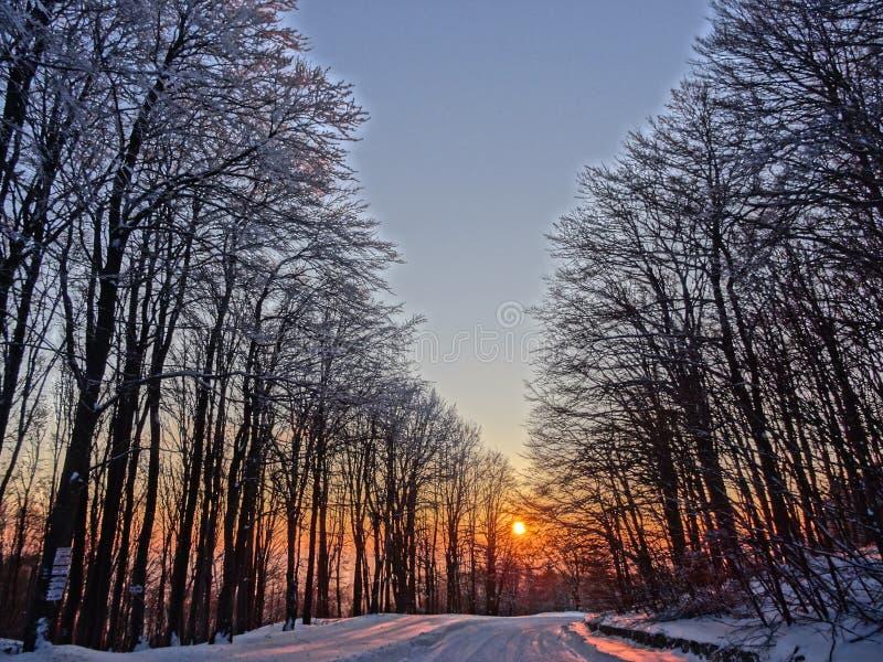 Härlig solnedgång i ett gammalt berg royaltyfri fotografi