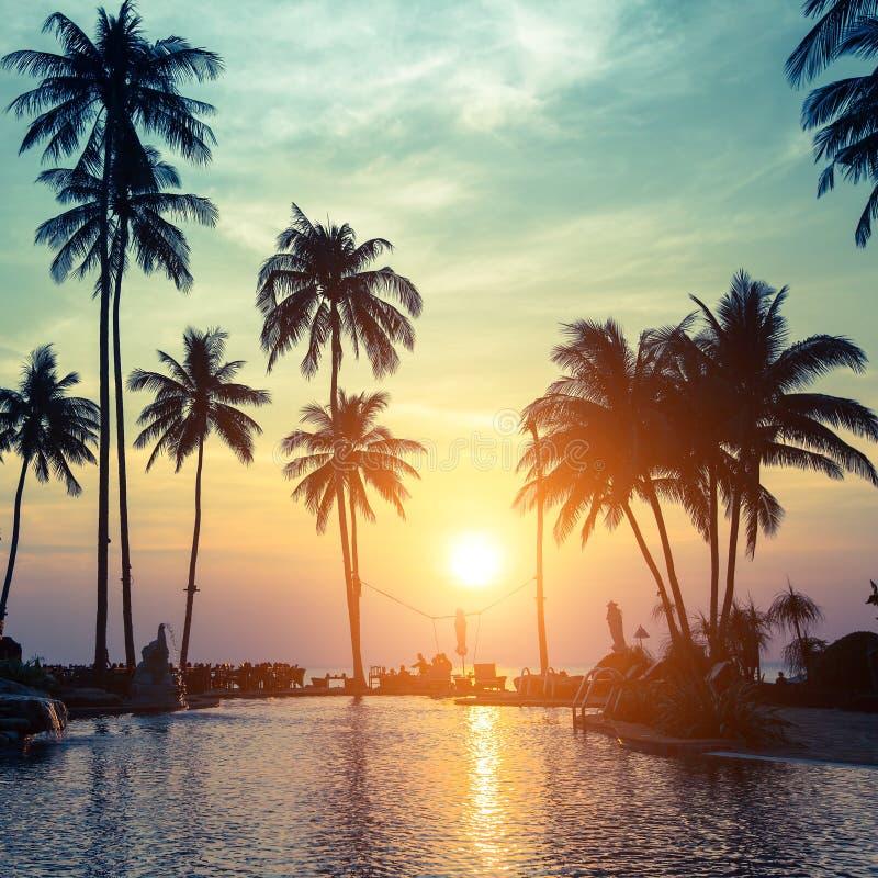 Härlig solnedgång med konturer av palmträd på en tropisk strand royaltyfria bilder