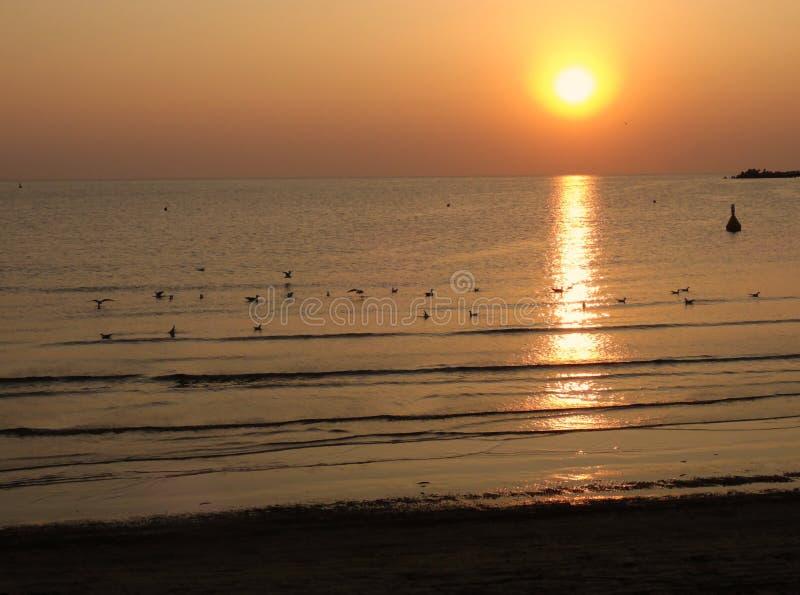 Härlig solnedgång på Blacket Sea i Rumänien royaltyfri fotografi