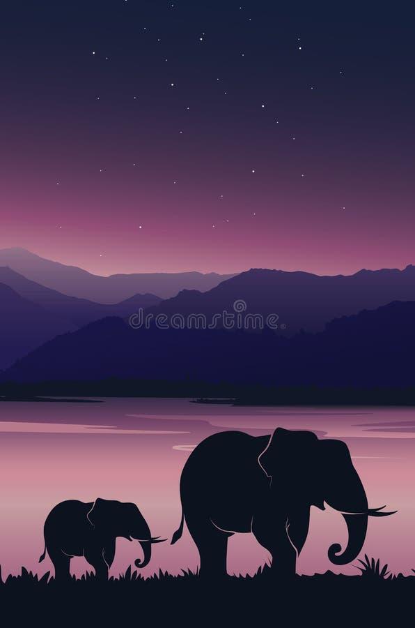 Härlig solnedgångbakgrund med elefanten Behandla som ett barn elefanten med mamman under rosa himmel vektor illustrationer