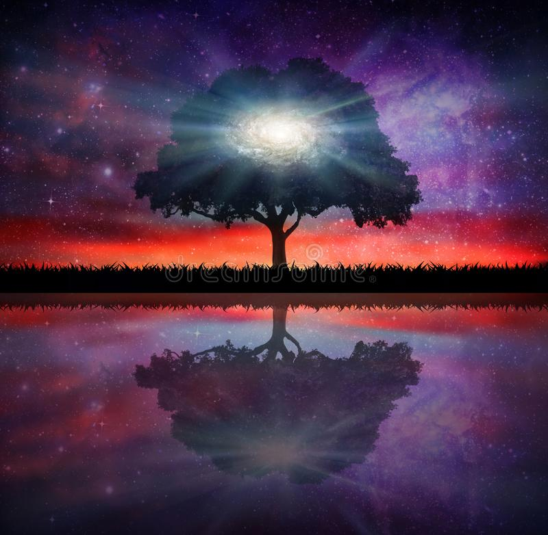Härlig solnedgånghimmel, kosmos för kontur för vattenreflexionsträd, galaxylandscape royaltyfri illustrationer