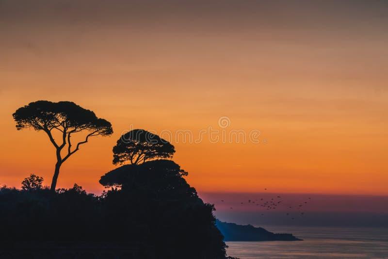 Härlig solnedgångsolinställning bak träd på Italien kullar i Sorrento, bastställe i Italien royaltyfri foto
