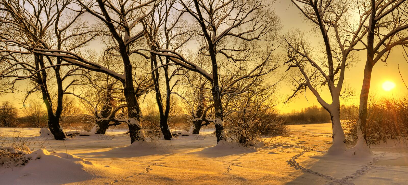 härlig solnedgångvinter arkivfoton