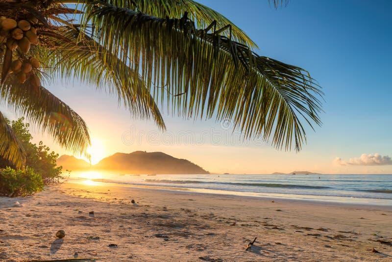Härlig soluppgång över den tropiska stranden arkivbild