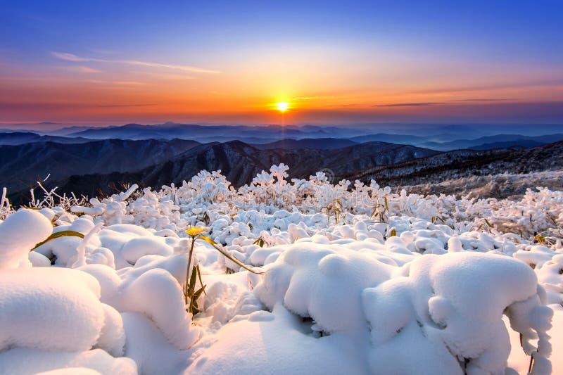 Härlig soluppgång på Deogyusan berg som täckas med insnöad wiinvinter, Korea royaltyfri foto