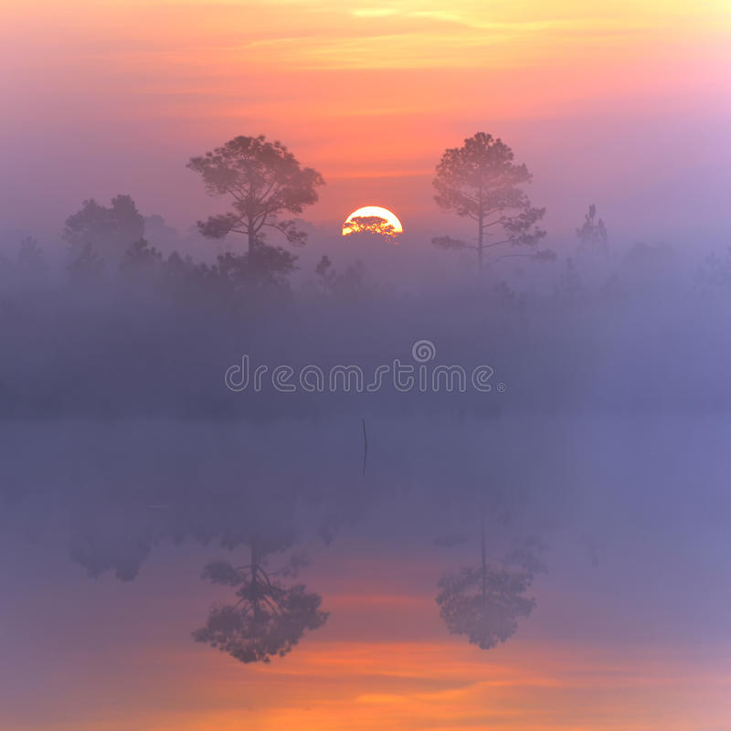 Härlig soluppgång som reflekterar i sjövatten royaltyfri bild