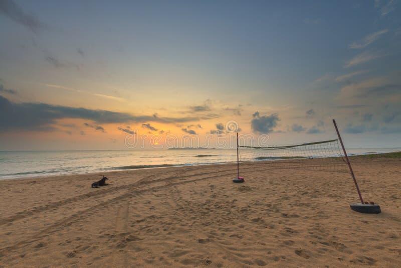 Härlig soluppgång, volleyboll förtjänar på havsstranden med hunden i morgonen royaltyfria bilder