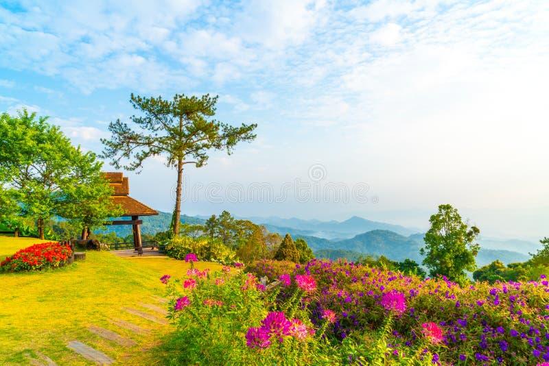 Härlig soluppgånghimmel med trädgården på berget på Huai Nam Dang National Park arkivfoton