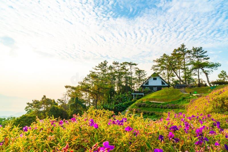 Härlig soluppgånghimmel med trädgården på berget på Huai Nam Dang National Park royaltyfria foton